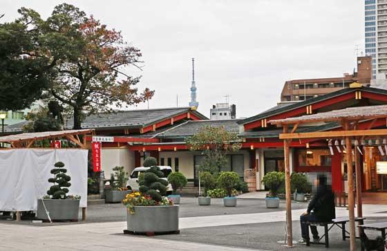 境内から東京スカイツリーを望む