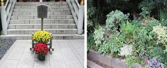 鳥居へ向かう階段と入り口