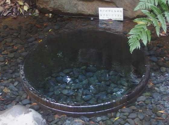 清正井(きよまさのいど)